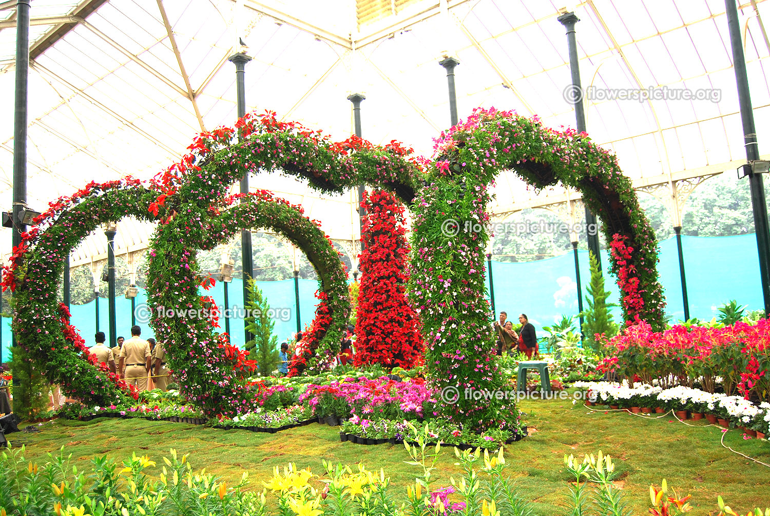 4d3164a8cd2f Bangalore lalbagh flower show 2016 republic day special photos