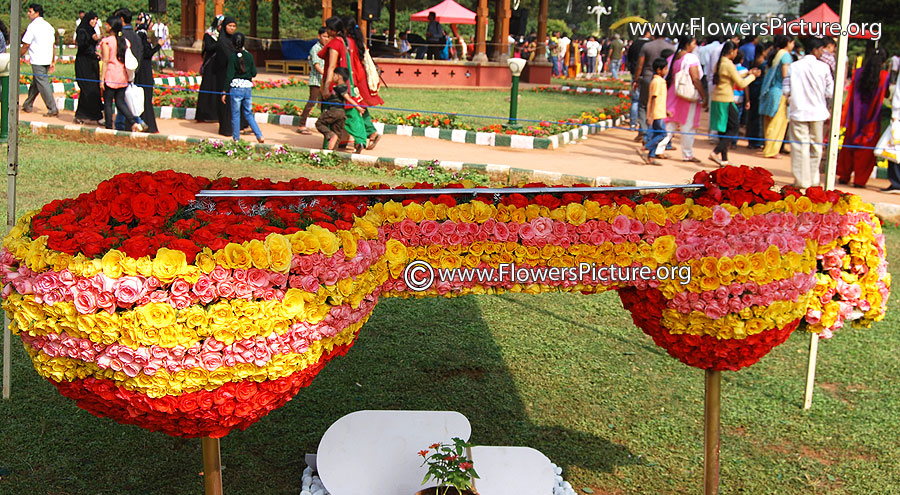 Flower veena-Lalbagh-flower-show-Republic day-2015