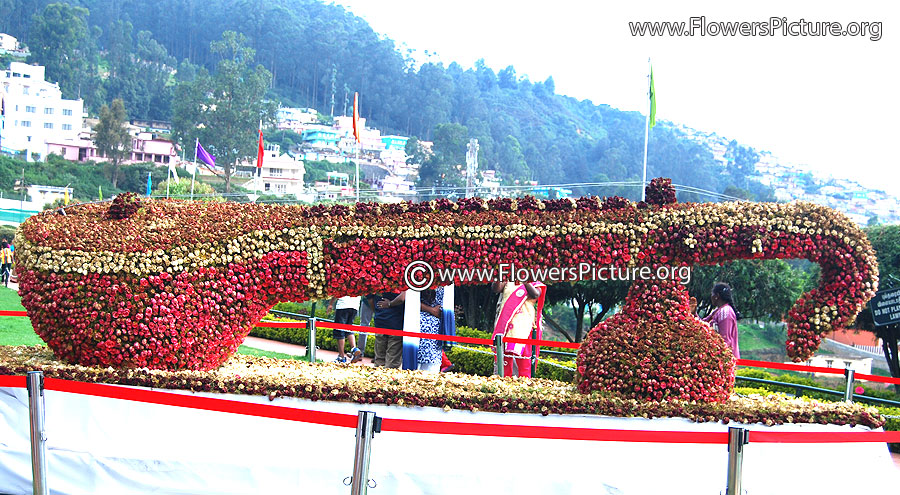 Flower Veena - Rose flower show ooty 2014