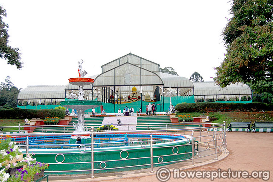 Independence day flower show-Lalbagh August 2014