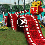 Ooty flower show 2017 video
