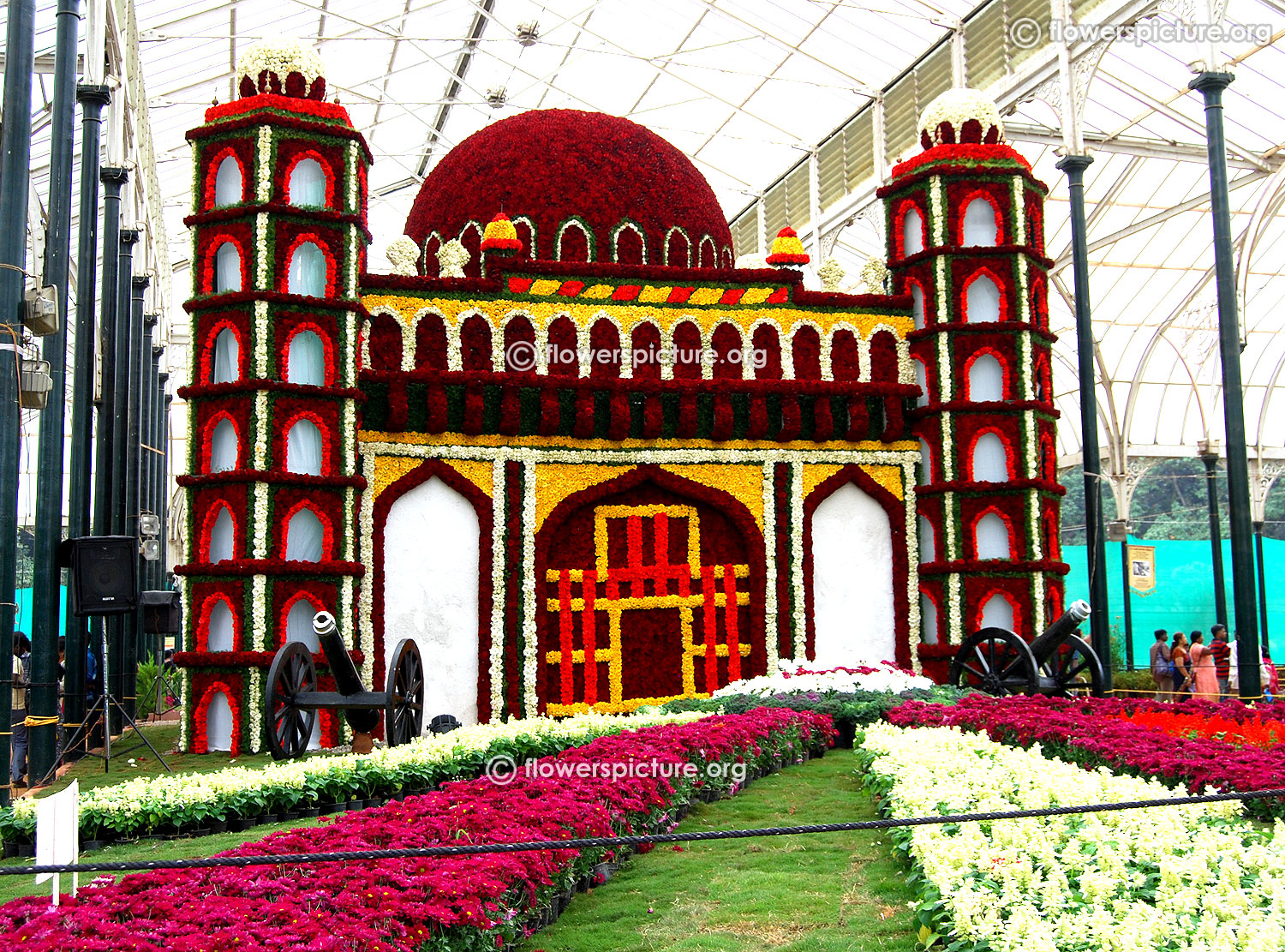 1d0d6e409039 204 th bangalore lalbagh flower festival august 2016 pictures gallery 4