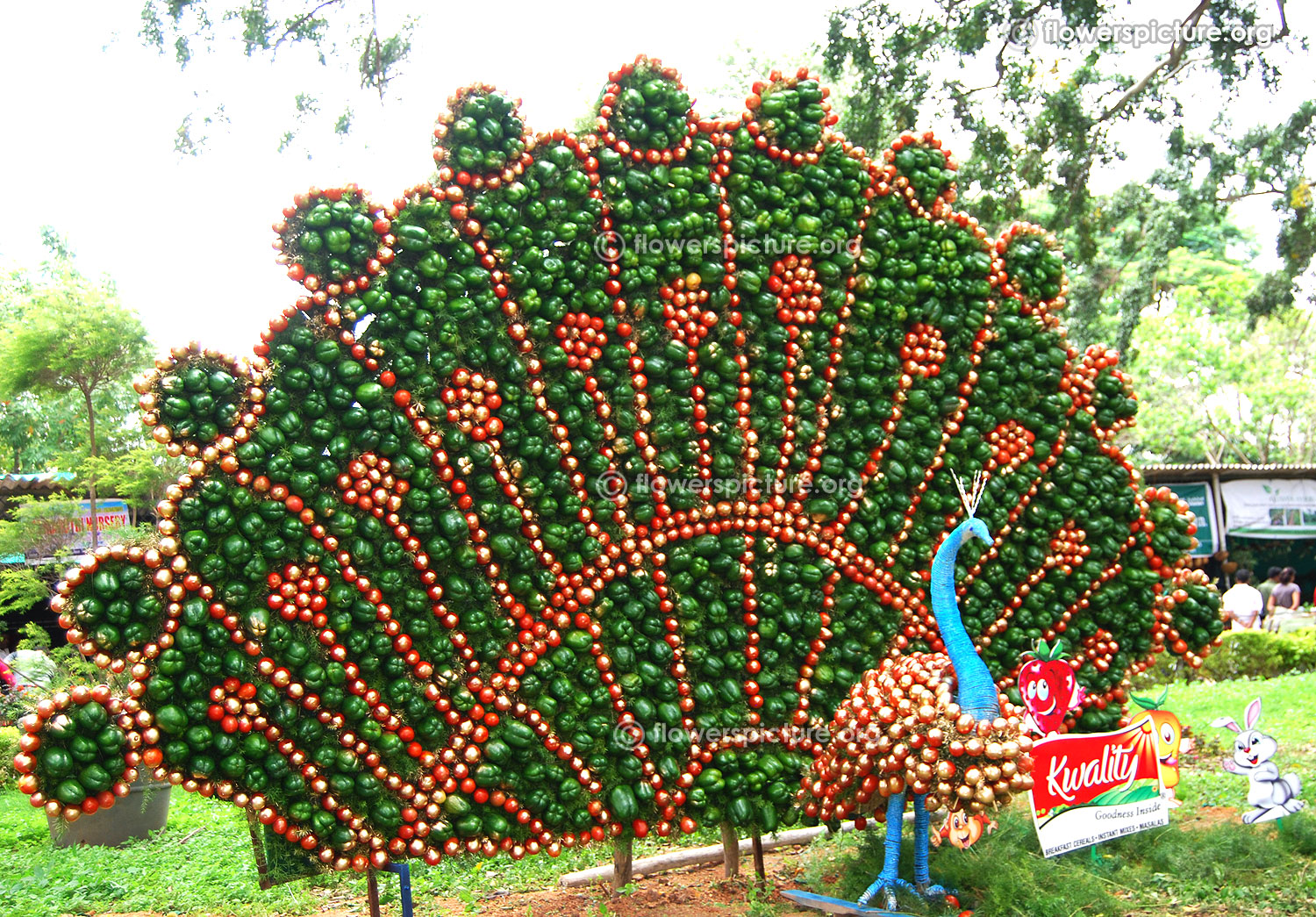 Rose Garden Creations: Lalbagh Flower Show August 2016 Photos-Independence Day
