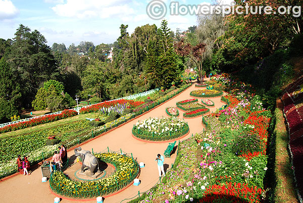 Government botanical gardens ooty terrace view