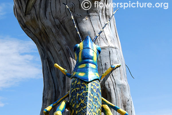 Grasshopper in tree statue