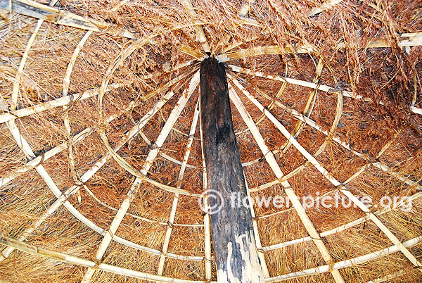 Hut roof design in trichy butterfly park